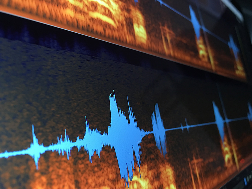 What's doable in an Audio Investigation?